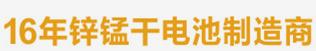 全球领先的锌锰干电池生产厂家